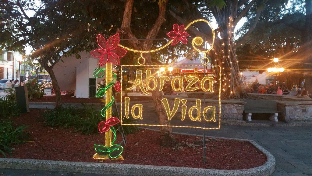 Plaza de Caguas Navidad 2016-2017 15