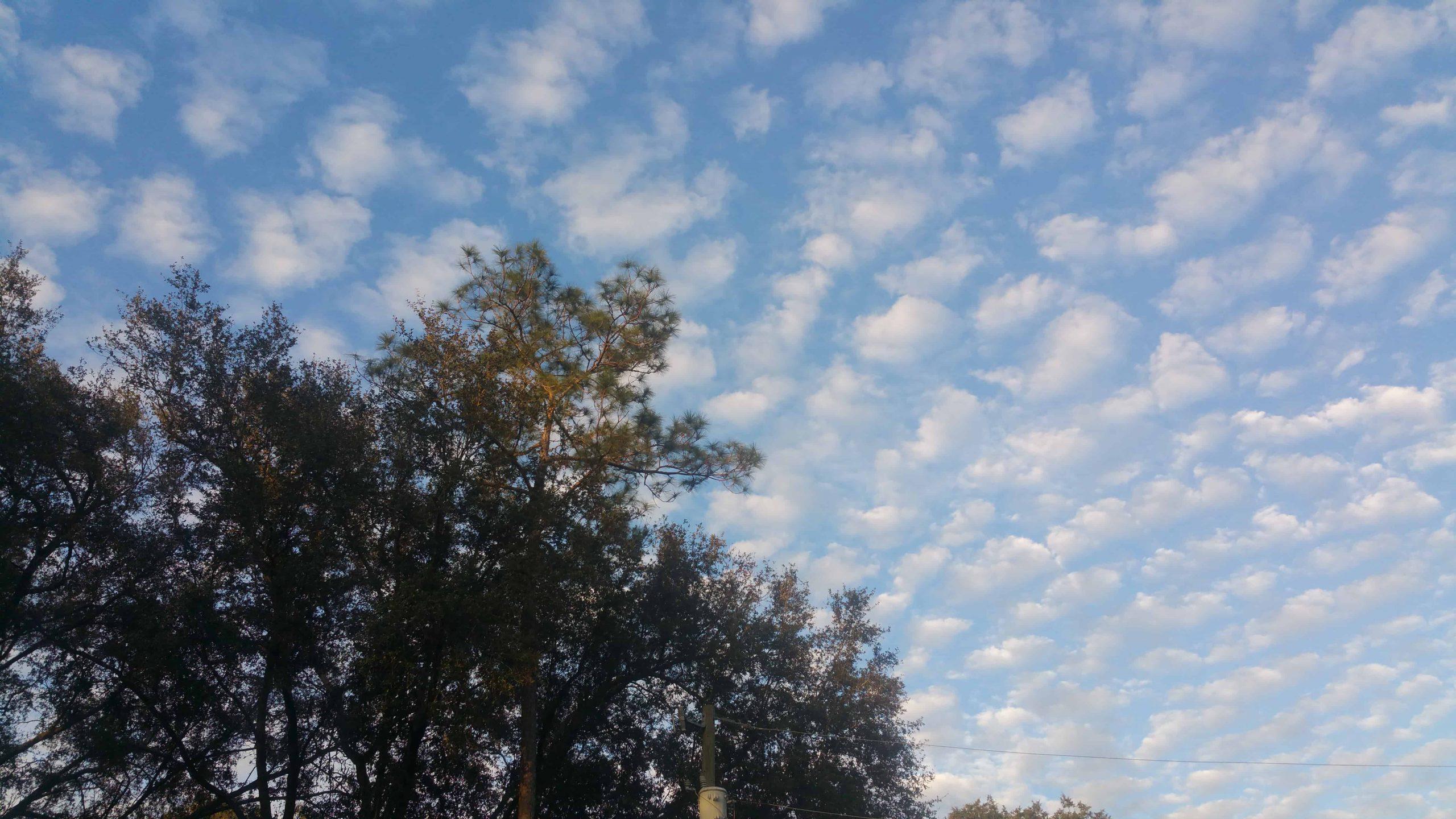 Clouds - December 14, 2017 - 4