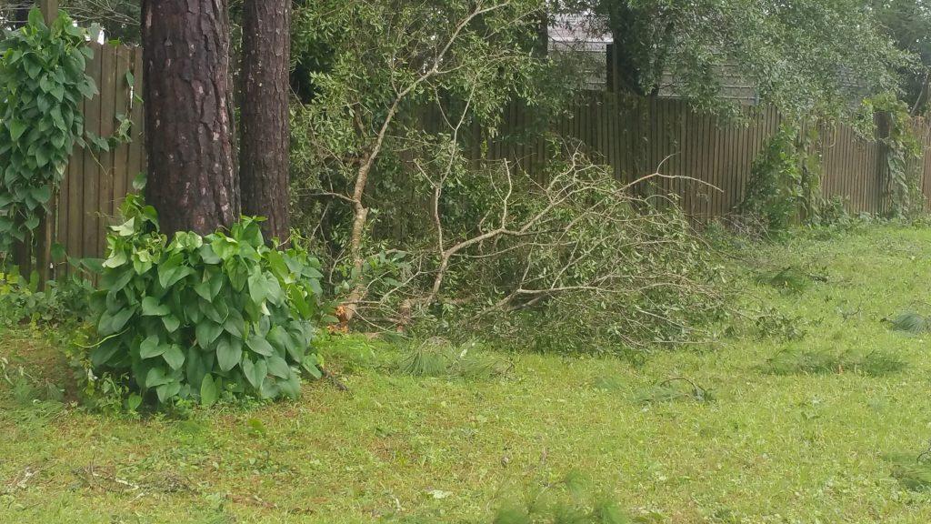 Hurricane Irma - Marion County - 1