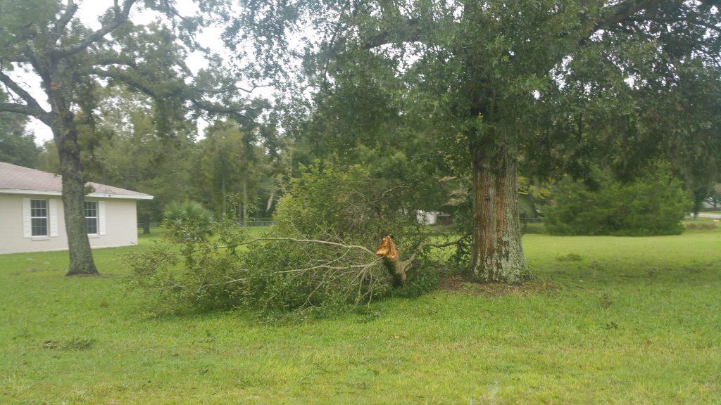 Hurricane Irma - Marion County - 10