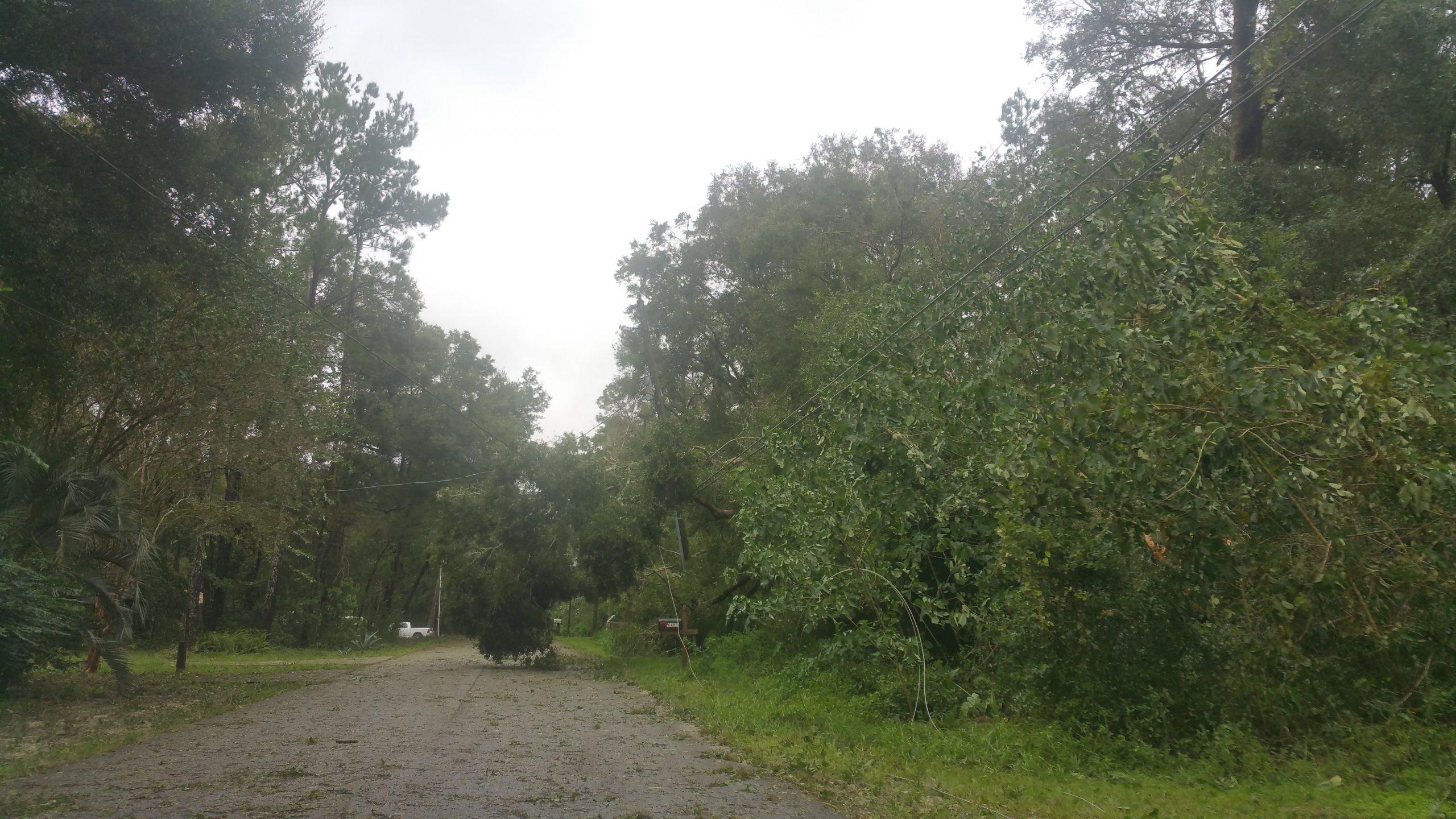 Hurricane Irma - Marion County - 13