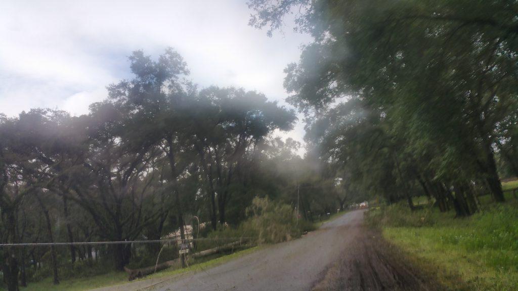 Hurricane Irma - Marion County - 5