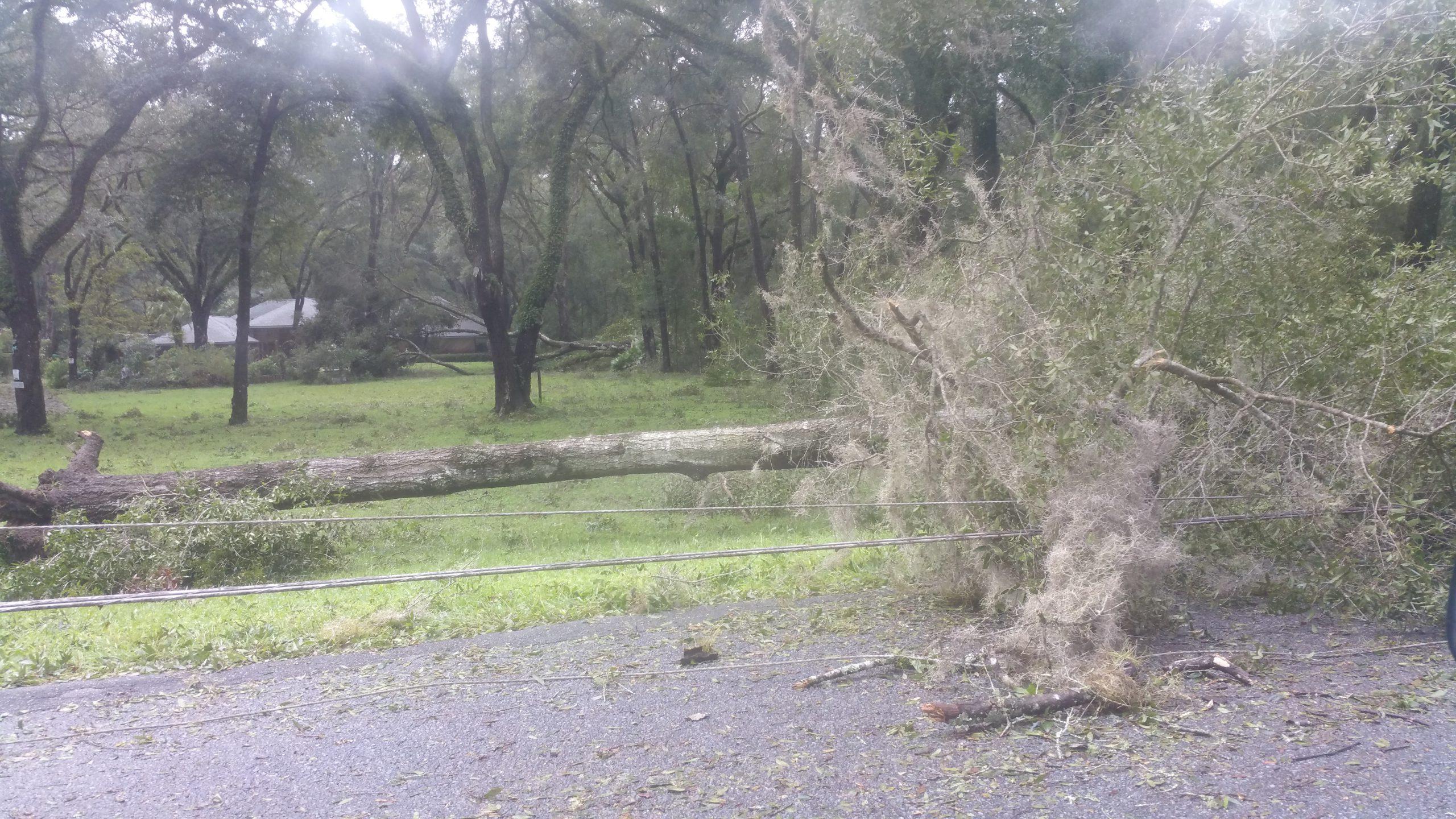 Hurricane Irma - Marion County - 6