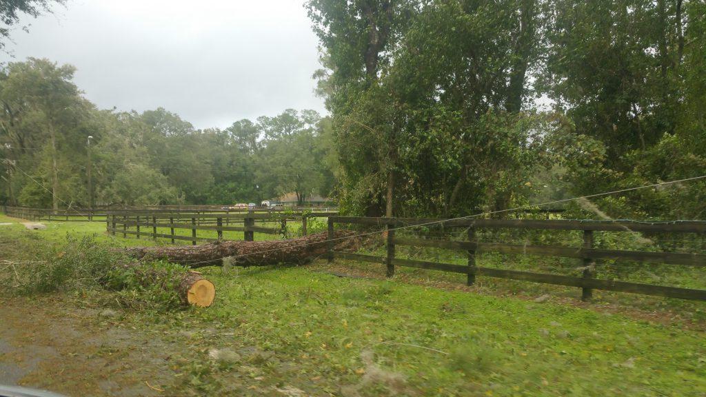 Hurricane Irma - Marion County - 8