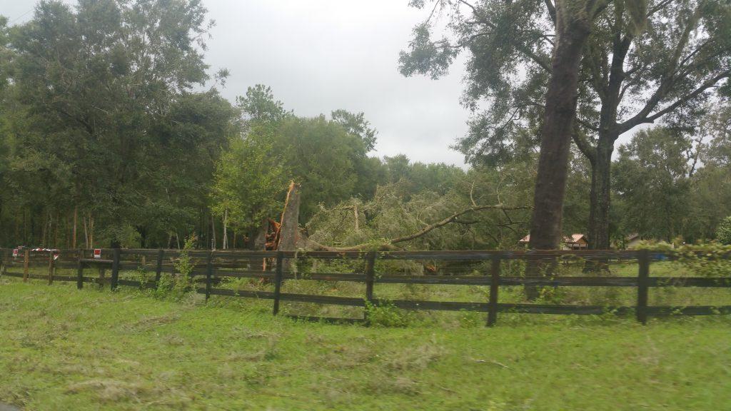 Hurricane Irma - Marion County - 9