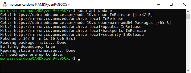 NodeJS manual installation apt update
