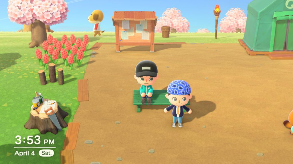 Animal Crossing: New Horizons 20