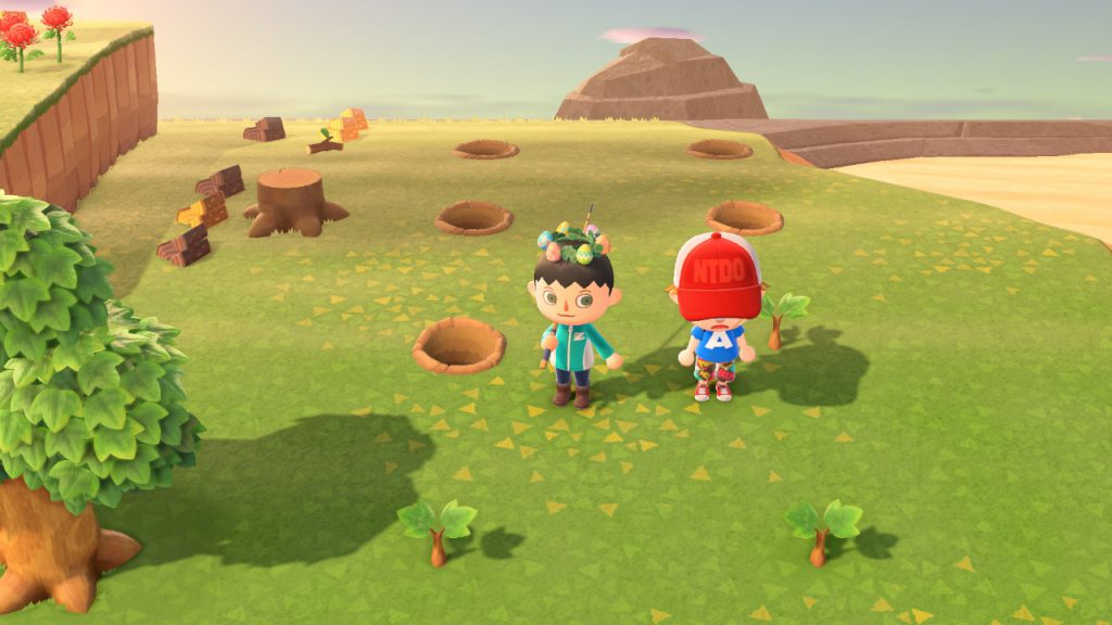 Animal Crossing: New Horizons 22