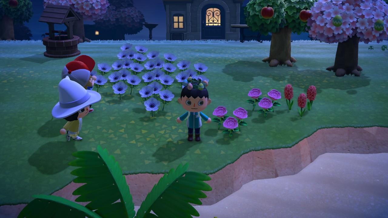 Animal Crossing: New Horizons 23