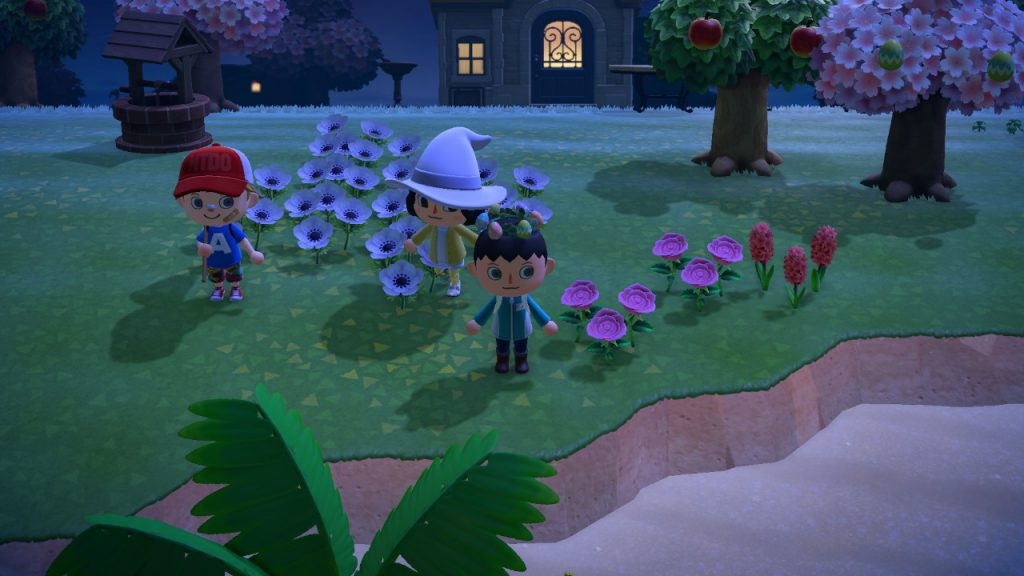 Animal Crossing: New Horizons 24