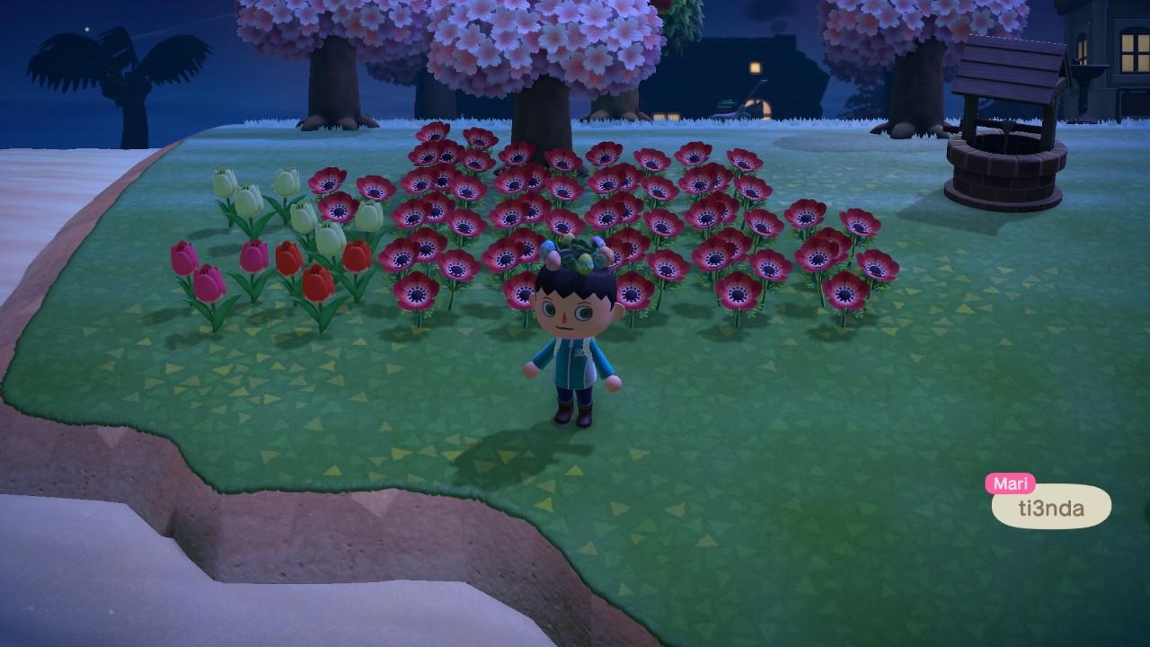 Animal Crossing: New Horizons 25