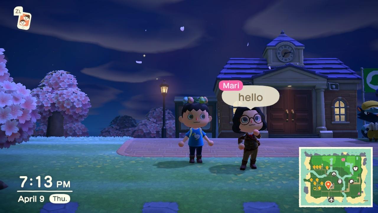 Animal Crossing: New Horizons 34
