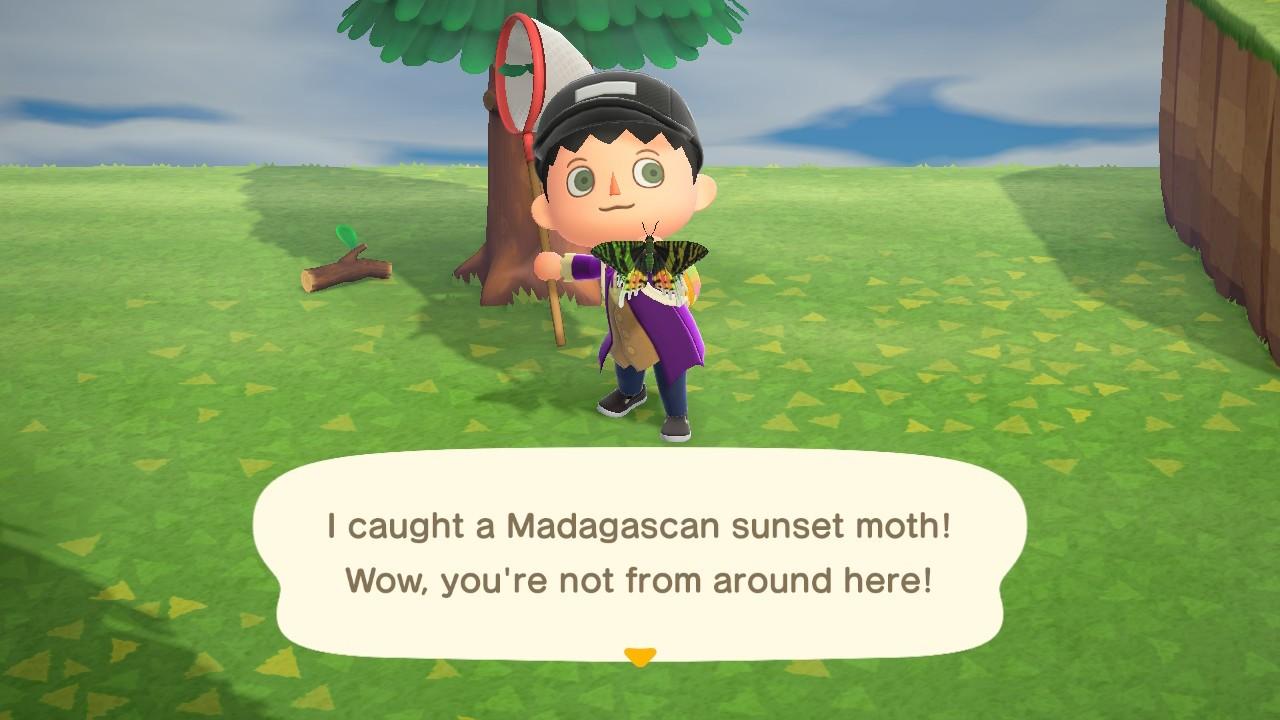Animal Crossing: New Horizons 15