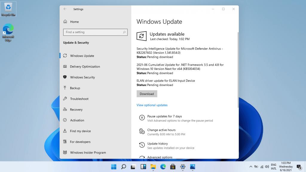 Windows 11 Desktop 5